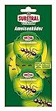 Substral Celaflor Ameisen-Köder, zur Bekämpfung von Ameisen im Haus und auf...