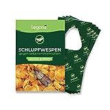 Legona® - Schlupfwespen gegen Lebensmittelmotten / 4X Trigram-Karte à 3...