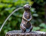 IDYL Rottenecker Bronze-Skulptur Erdmännchen klein wasserspeiend (ohne Granit-Stein)...
