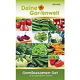 Gemüsesamen Set - 12 Sorten Samen - Saatgut Sortiment - Anzuchtset für...