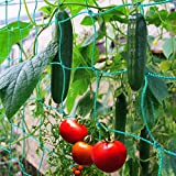 GardenGloss Premium Ranknetz mit großer Maschenweite für besonders ertragreiche...