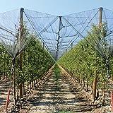 Verdemax 6767 2 x 20 m Hagelschutznetz