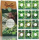 Kräuter Samen Set – 12 Sorten Bio Samen für Bio Küchenkräuter. Perfektes...