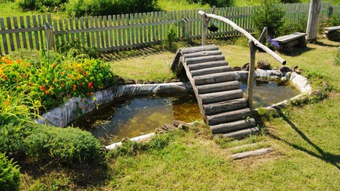 Sommerende - Teich mit Brücke