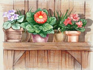 Blumenregal