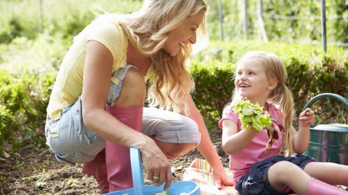 Mutter und Tochter ernten Salat im Garten