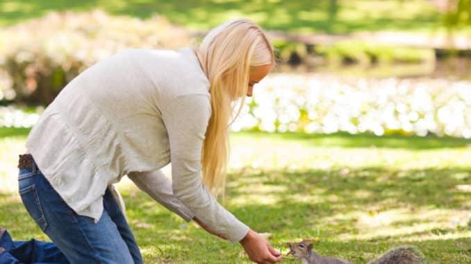 Frau füttert Eichhörnchen