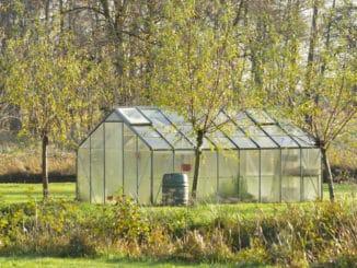 Glasgewächshaus