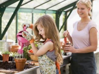 Wie bepflanzt man ein Gewächshaus