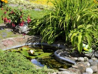 Gartenteich mit Kapillarsperre